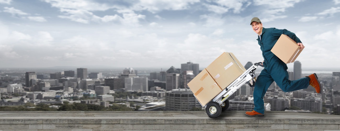 The reliable way to book courier services in Brighton